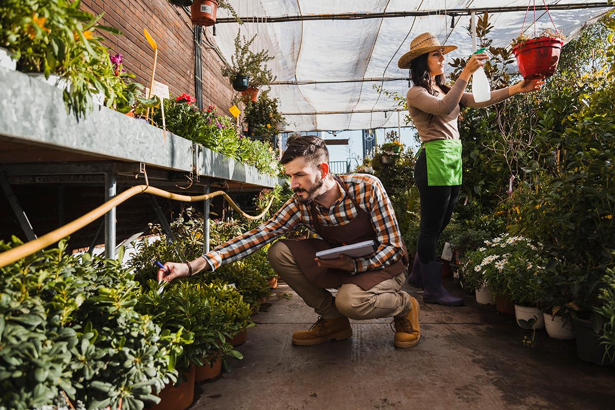 lavoro apprendista giardiniere